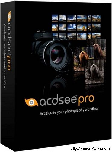 ACDSee Pro 8.2 Build 287 (2015) PC | RePack by KpoJIuK